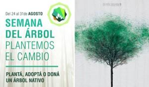 Semana-del-Árbol